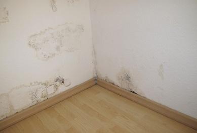 mold-corner