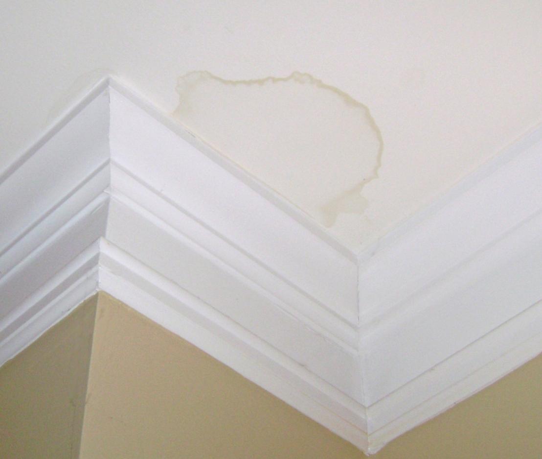 Ceiling Water Leak