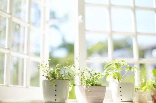 The Importance of Proper Indoor Air Quality