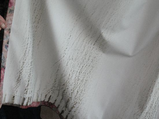 mold on drapes