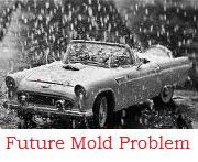 mold problems